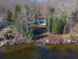Chalet à vendre à Duhamel, Outaouais, 4540, Chemin du Lac-Gagnon Ouest, 10348614 - Centris.ca