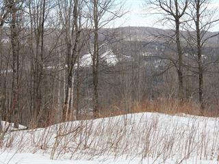 Lot for sale in Morin-Heights, Laurentides, Chemin du Hameau, 26825211 - Centris.ca