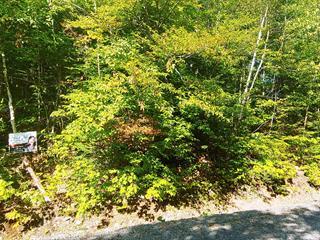 Terrain à vendre à Chertsey, Lanaudière, Chemin du Domaine-des-Chutes, 25850316 - Centris.ca
