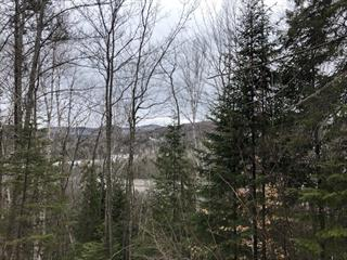 Lot for sale in Val-David, Laurentides, Rue des Lilas, 15099122 - Centris.ca