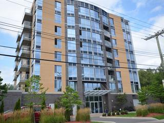 Condo à vendre à Montréal (Pierrefonds-Roxboro), Montréal (Île), 420, Chemin de la Rive-Boisée, app. 204, 13422820 - Centris.ca