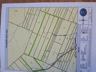 Land for sale in Cascapédia/Saint-Jules, Gaspésie/Îles-de-la-Madeleine, 94, Chemin  Beauglen, 9570628 - Centris.ca