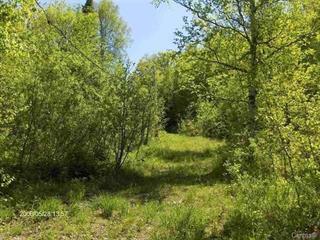 Terre à vendre à Saint-Faustin/Lac-Carré, Laurentides, 1310, Chemin du Lac-Caché, 21896132 - Centris.ca