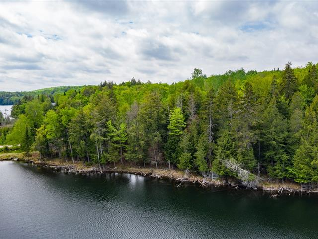Lot for sale in Amherst, Laurentides, Chemin du Lac-de-la-Grange, 21998076 - Centris.ca