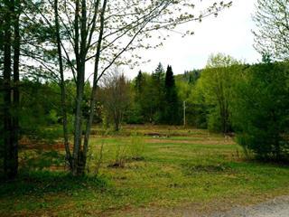 Terrain à vendre à Saint-Gabriel-de-Valcartier, Capitale-Nationale, 10, Rue  Clark, 21708290 - Centris.ca