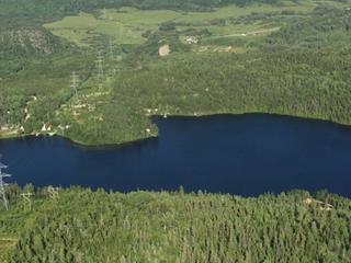 Terrain à vendre à Les Bergeronnes, Côte-Nord, Lac  Gobeil, 17454448 - Centris.ca
