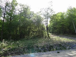 Lot for sale in Stanstead - Canton, Estrie, Chemin  Astbury, 11327651 - Centris.ca