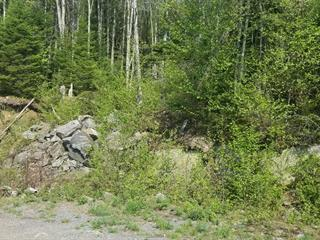 Lot for sale in Saint-Gabriel-de-Valcartier, Capitale-Nationale, Rue  Jacques-Giroux, 23017913 - Centris.ca