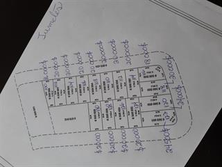 Terrain à vendre à Saint-Arsène, Bas-Saint-Laurent, 120, Rue des Framboisiers, 10595117 - Centris.ca