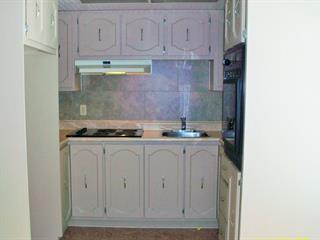 Maison à vendre à Rawdon, Lanaudière, 3834, Rue  Vital-Perreault, 23496461 - Centris.ca