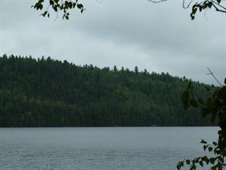 Terrain à vendre à Saguenay (Jonquière), Saguenay/Lac-Saint-Jean, 6768, Chemin  Saint-André, 23933613 - Centris.ca