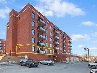 Condo for sale in Montréal (Le Sud-Ouest), Montréal (Island), 5600, Rue  Briand, apt. 201, 18919069 - Centris.ca