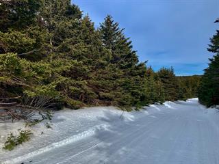 Terrain à vendre à Les Îles-de-la-Madeleine, Gaspésie/Îles-de-la-Madeleine, Chemin des Arpenteurs, 16566040 - Centris.ca