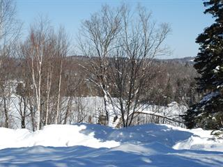 Terrain à vendre à Sainte-Agathe-des-Monts, Laurentides, Chemin  Sir-Mortimer-B.-Davis, 20922348 - Centris.ca