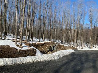 Terrain à vendre à Shefford, Montérégie, Impasse du Coteau, 11283754 - Centris.ca