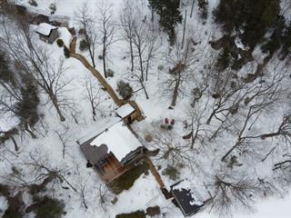 Maison à vendre à Lac-Sergent, Capitale-Nationale, 96, Chemin de la Montagne, 11394831 - Centris.ca