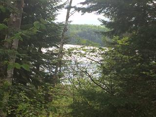 Land for sale in Saint-Guillaume-Nord, Lanaudière, 1701, Chemin  Matawin Ouest, 22433238 - Centris.ca