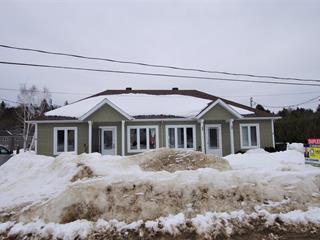 Duplex for sale in Brébeuf, Laurentides, 4 - 6, 1re Avenue, 19699036 - Centris.ca