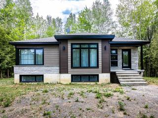 House for sale in Daveluyville, Centre-du-Québec, 60, Chemin du Tour-de-l'Île, 11689216 - Centris.ca