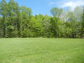 Lot for sale in Chelsea, Outaouais, 2, Chemin du Croissant, 15938658 - Centris.ca