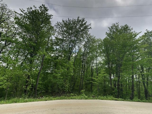 Lot for sale in Val-des-Monts, Outaouais, 825, Chemin du Fort, 13953633 - Centris.ca