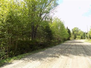 Terrain à vendre à Lantier, Laurentides, Chemin de la Rivière, 10382007 - Centris.ca