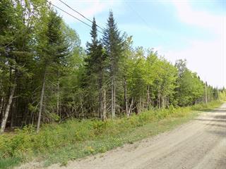 Terrain à vendre à Lantier, Laurentides, Chemin de la Rivière, 9779966 - Centris.ca