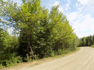 Terrain à vendre à Lantier, Laurentides, Chemin de la Rivière, 28343942 - Centris.ca