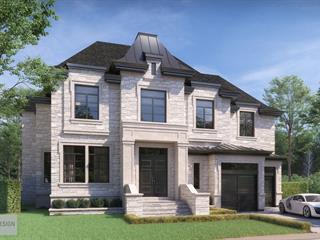 Land for sale in Montréal (Saint-Laurent), Montréal (Island), 3870, Carré  Pauline-Lighstone, 15374177 - Centris.ca