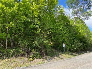 Terrain à vendre à Saint-Sauveur, Laurentides, Chemin du Bel-Air, 21673275 - Centris.ca