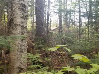 Terrain à vendre à Lac-Beauport, Capitale-Nationale, Chemin des Quatre-Vents, 28038946 - Centris.ca