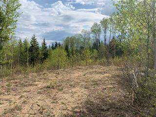 Lot for sale in La Malbaie, Capitale-Nationale, Rang  Saint-Joseph, 27743353 - Centris.ca