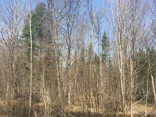 Lot for sale in Weedon, Estrie, Chemin  Rousseau, 20990054 - Centris.ca