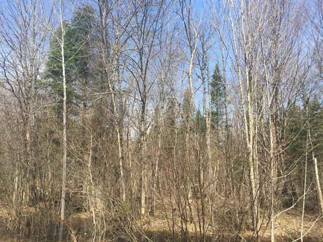 Terrain à vendre à Weedon, Estrie, Chemin  Rousseau, 20990054 - Centris.ca