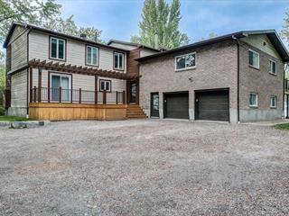 Maison à vendre à Pontiac, Outaouais, 97, Chemin des Oies, 12244523 - Centris.ca