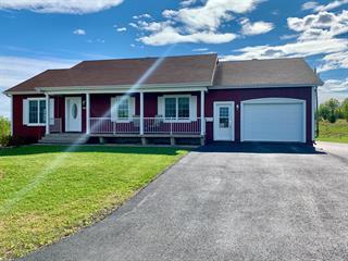 Maison à vendre à Saint-François-d'Assise, Gaspésie/Îles-de-la-Madeleine, 104, Rue des Érables, 28539433 - Centris.ca