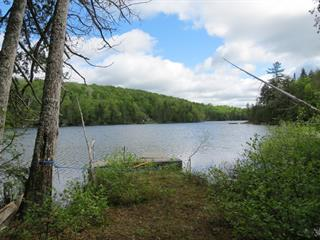 Land for sale in Rivière-Rouge, Laurentides, Chemin du Lac-McCaskill, 20819781 - Centris.ca