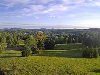 Lot for sale in La Minerve, Laurentides, 11, Chemin des Versants, 23335287 - Centris.ca