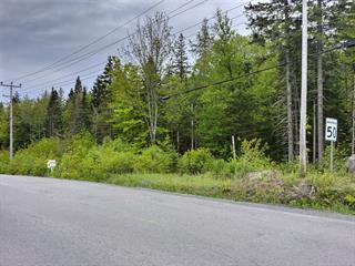 Lot for sale in Sainte-Marguerite-du-Lac-Masson, Laurentides, Chemin de Chertsey, 25904577 - Centris.ca