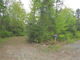 Lot for sale in Chertsey, Lanaudière, Chemin de la Grande-Vallée, 19184521 - Centris.ca