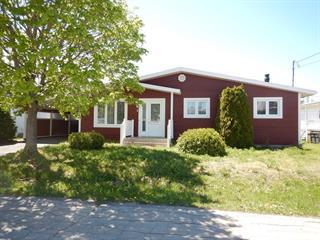 Maison à vendre à Saint-Jean-de-Dieu, Bas-Saint-Laurent, 1, 1re Avenue, 18436865 - Centris.ca