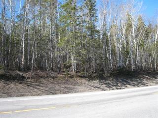Terrain à vendre à Gaspé, Gaspésie/Îles-de-la-Madeleine, boulevard de Douglas, 24246955 - Centris.ca