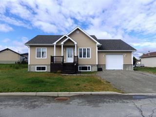 Maison à vendre à Amos, Abitibi-Témiscamingue, 111, Rue du Centenaire, 23717029 - Centris.ca