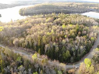 Lot for sale in Shawinigan, Mauricie, Chemin des Estacades, 24219325 - Centris.ca