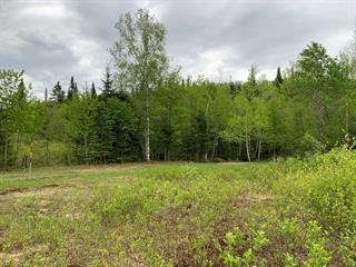 Land for sale in Saint-Léonard-de-Portneuf, Capitale-Nationale, Chemin  Bellerive, 9208075 - Centris.ca