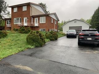 Duplex for sale in Rouyn-Noranda, Abitibi-Témiscamingue, 77, Rue  Poirier, 25903556 - Centris.ca