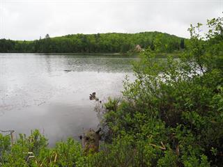 Terrain à vendre à Saint-Aimé-du-Lac-des-Îles, Laurentides, Chemin du Lac-aux-Bouleaux Ouest, 16573297 - Centris.ca