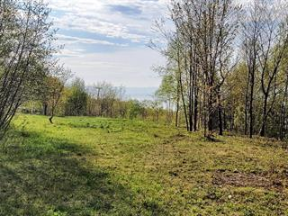 Lot for sale in Petite-Rivière-Saint-François, Capitale-Nationale, Rue  Principale, 26200588 - Centris.ca