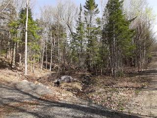 Lot for sale in Wentworth-Nord, Laurentides, Chemin des Cumulus, 24447735 - Centris.ca