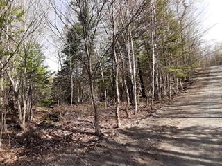 Lot for sale in Wentworth-Nord, Laurentides, Chemin des Napées, 10831967 - Centris.ca